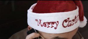Video per augurare buon natale a tutti da Delizia Ricevimenti